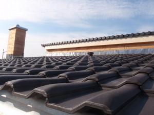 Glänzendes Dach